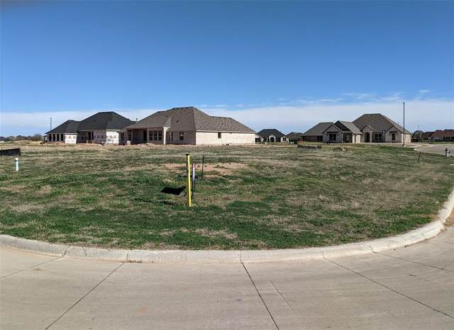1030 Mickelson Drive, Granbury, TX 76048 (MLS #14532428) :: The Hornburg Real Estate Group