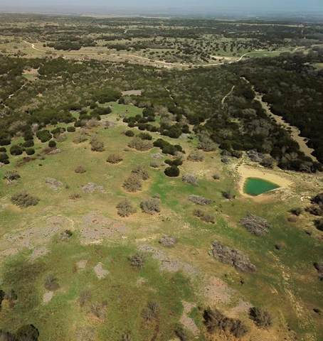 TBD County Road 2130, Meridian, TX 76665 (MLS #14533714) :: The Kimberly Davis Group
