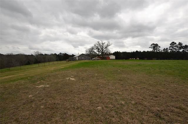 22208 County Road 251, Arp, TX 75750 (MLS #14534313) :: The Kimberly Davis Group