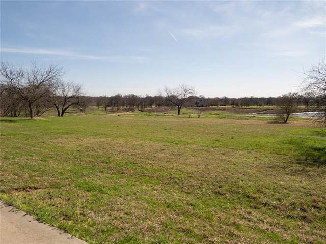 187 Roberts Run, Sherman, TX 75092 (MLS #14534404) :: The Hornburg Real Estate Group