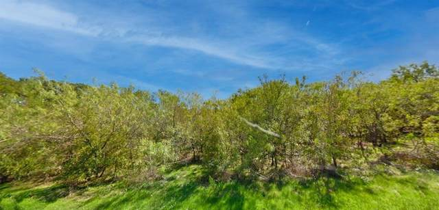 Lot 6 SE Cr 3048A, Mildred, TX 75109 (MLS #14535504) :: Lyn L. Thomas Real Estate | Keller Williams Allen