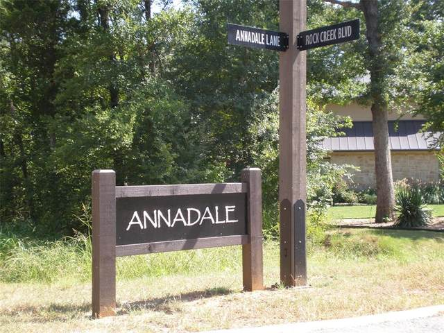 Lot 6 B Annadale, Gordonville, TX 76245 (MLS #14536696) :: Hargrove Realty Group