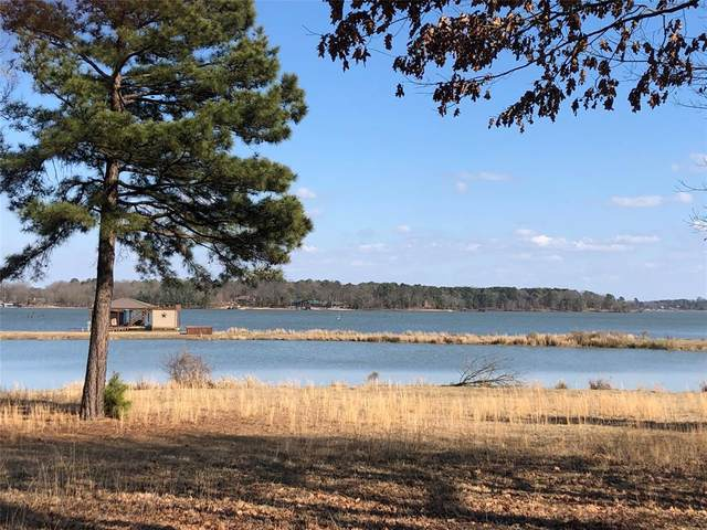 79 Waters Edge Lane, Scroggins, TX 75480 (MLS #14536703) :: Results Property Group