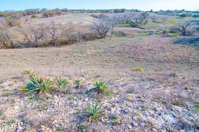 Tract 1 Fm 572 E, Goldthwaite, TX 76844 (MLS #14538338) :: Real Estate By Design