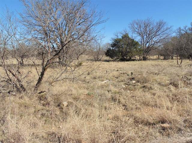 Lot 185 Woods Landing Drive, Brownwood, TX 76801 (MLS #14538886) :: The Chad Smith Team