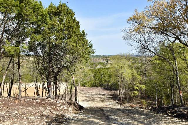 3735 Skyline, Bluff Dale, TX 76433 (MLS #14539075) :: Hargrove Realty Group