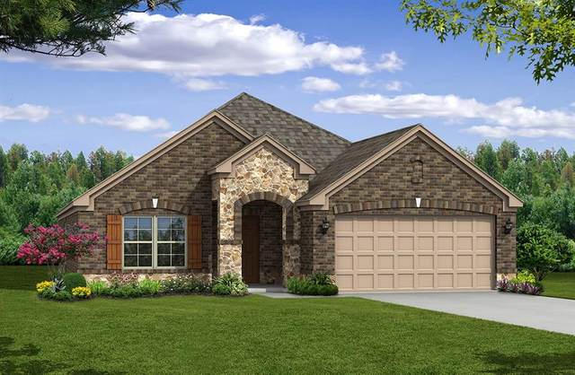 219 Red Oak Drive, Fate, TX 75087 (MLS #14540558) :: Results Property Group