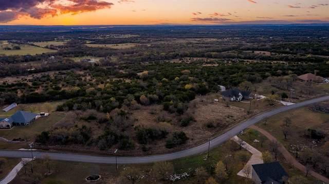 Lot 16 Falcon Drive, Glen Rose, TX 76043 (MLS #14541041) :: Hargrove Realty Group