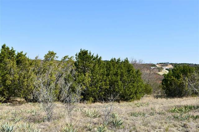650 Blue Marlin, Bluff Dale, TX 76433 (MLS #14541090) :: Hargrove Realty Group