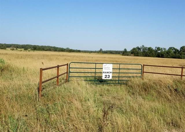 23 Lot County Rd 159, Callisburg, TX 76240 (MLS #14541094) :: Premier Properties Group of Keller Williams Realty