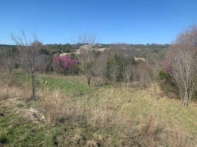 935 Bluegill Ridge, Bluff Dale, TX 76433 (MLS #14541483) :: Potts Realty Group