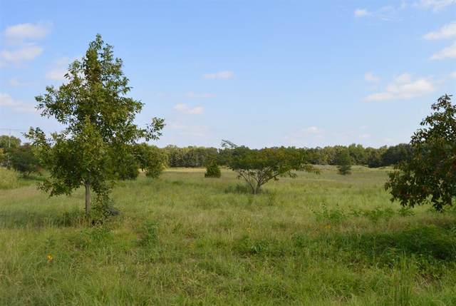 TBD County Road 1515, Alba, TX 75410 (MLS #14542412) :: The Good Home Team