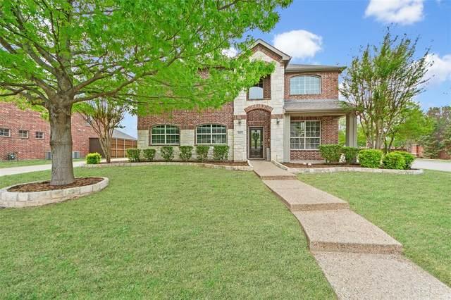 1613 Buckthorne Drive, Allen, TX 75002 (MLS #14542482) :: The Rhodes Team