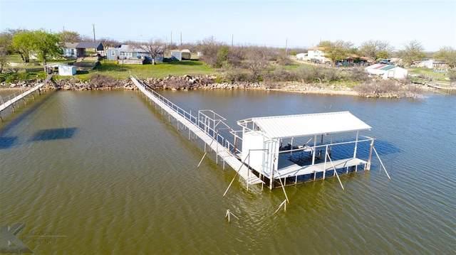 33 Poverty Point, Abilene, TX 79601 (MLS #14544059) :: The Chad Smith Team