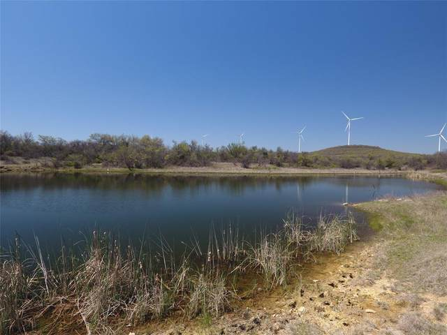 TBD Panhandle Road, Bryson, TX 76427 (MLS #14544220) :: Real Estate By Design