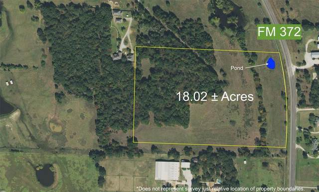 18 Ac Tbd Fm 372, Valley View, TX 76272 (MLS #14544391) :: The Kimberly Davis Group