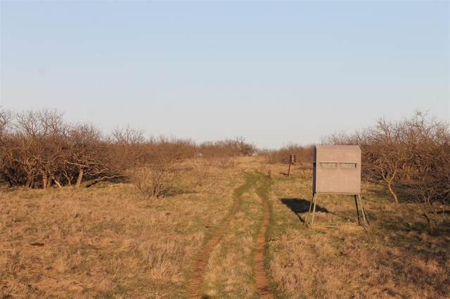 TBD County Rd 247, Clyde, TX 79510 (MLS #14544558) :: All Cities USA Realty