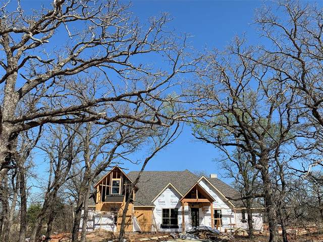 1133 Horizon Trace Drive, Azle, TX 76020 (MLS #14546082) :: Real Estate By Design