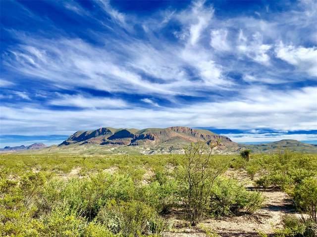 12000 Agua Fria Ranch Road, Terlingua, TX 79852 (MLS #14546215) :: The Hornburg Real Estate Group