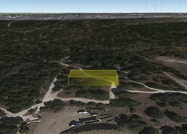 0 Griffing Avenue, Midlothian, TX 76065 (MLS #14546741) :: The Hornburg Real Estate Group