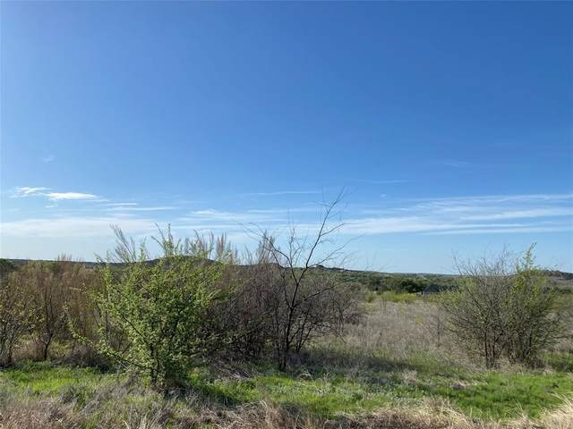 Lot 205 Evening Primrose Drive, Graford, TX 76449 (MLS #14549199) :: Lyn L. Thomas Real Estate | Keller Williams Allen