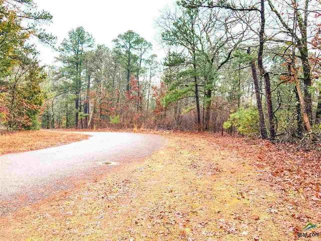 TBD County Road 2310, Lone Star, TX 75668 (MLS #14549585) :: The Kimberly Davis Group