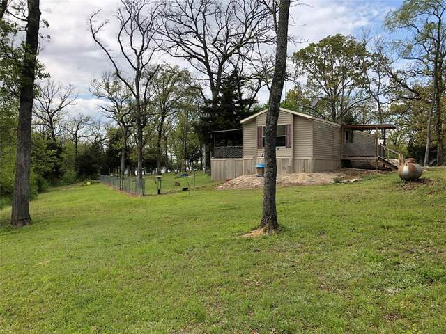 985 Indian Gap, Quitman, TX 75783 (MLS #14550298) :: The Hornburg Real Estate Group