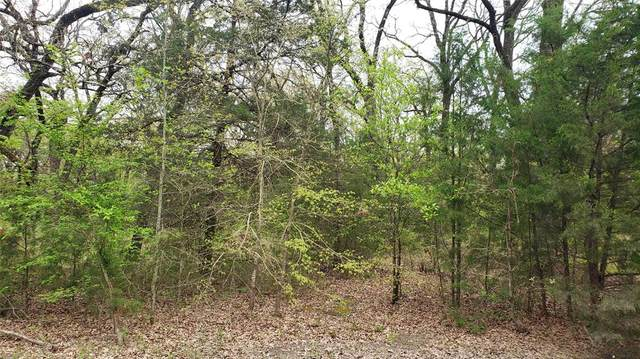 00 Running Bear Drive, Mabank, TX 75156 (MLS #14550323) :: Feller Realty