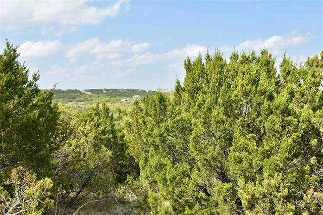 Tr 643 Blue Marlin, Bluff Dale, TX 76433 (MLS #14550623) :: Hargrove Realty Group