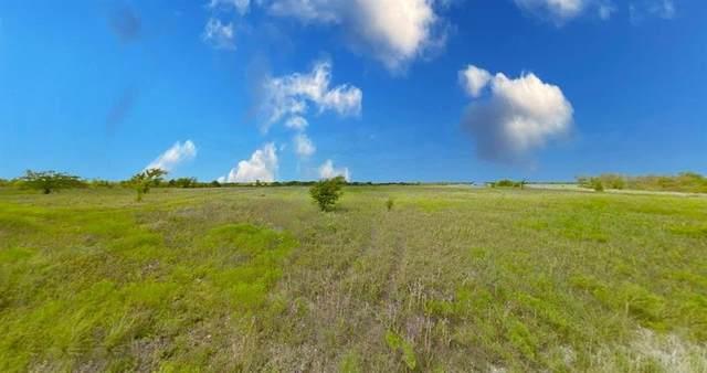Lot 12 Roark Drive, Decatur, TX 76234 (MLS #14551232) :: Trinity Premier Properties