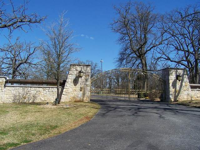 4 Summit Oaks Circle, Denison, TX 75020 (MLS #14551358) :: Team Hodnett