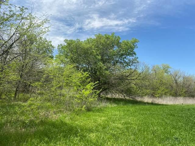 TBD County Rd 4615, Wolfe City, TX 75496 (MLS #14551582) :: The Chad Smith Team