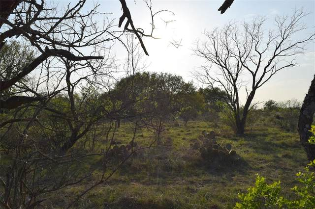TBD County Road 432, Coleman, TX 76834 (MLS #14552014) :: The Hornburg Real Estate Group