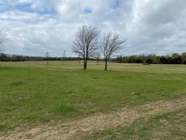 TBD N Lake Drive, Weatherford, TX 76085 (MLS #14552219) :: The Hornburg Real Estate Group