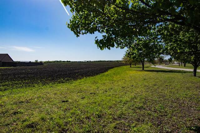0 Bucksnort Road, Whitewright, TX 75495 (MLS #14552813) :: Bray Real Estate Group