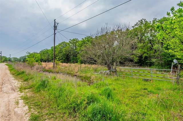 33864 Blanton Ranch Road, Kemp, TX 75143 (MLS #14553008) :: The Kimberly Davis Group