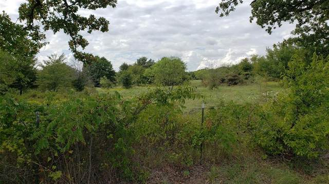 Lot 4 Ranch Road, Argyle, TX 76226 (MLS #14553237) :: Real Estate By Design