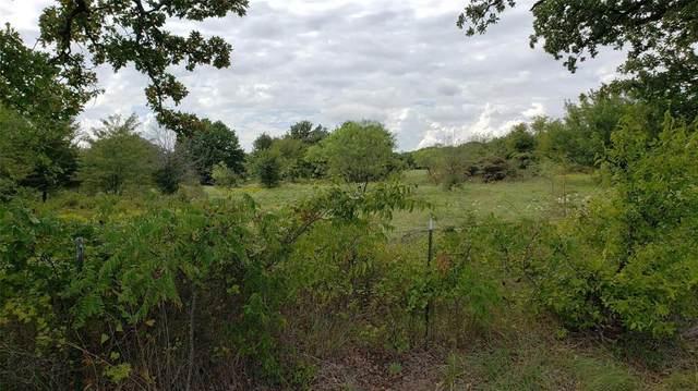 Lot 4 Ranch Road, Argyle, TX 76226 (MLS #14553237) :: Team Hodnett