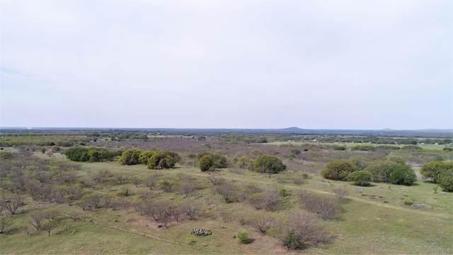 12797 County Road 434, Cross Plains, TX 76443 (MLS #14553285) :: The Hornburg Real Estate Group