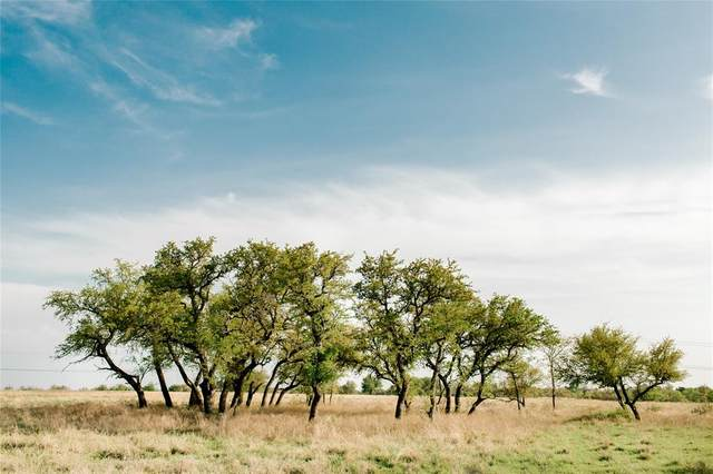 TBD A Old Agnes Road, Weatherford, TX 76088 (MLS #14553342) :: Real Estate By Design