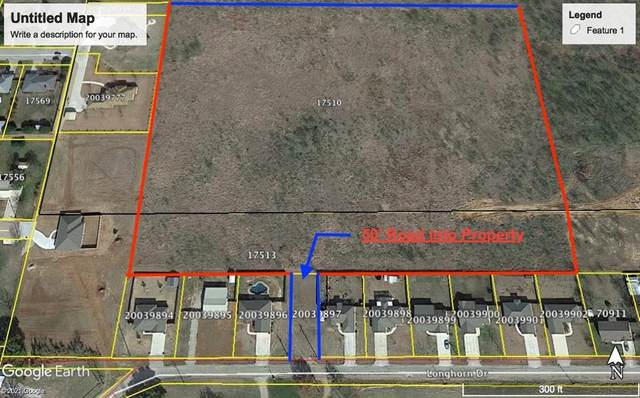 13A Longhorn Drive, Early, TX 76802 (MLS #14553692) :: Real Estate By Design