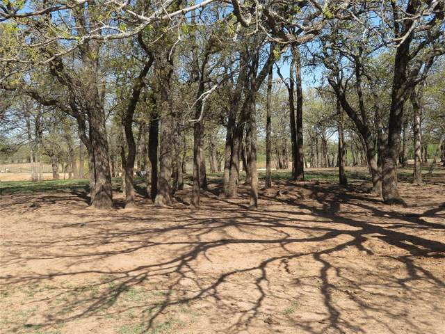 TBD Roth Road, Bowie, TX 76230 (MLS #14553799) :: The Kimberly Davis Group