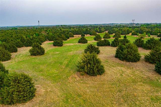Tract 1 Everheart Road, Bells, TX 75414 (MLS #14554090) :: Hargrove Realty Group