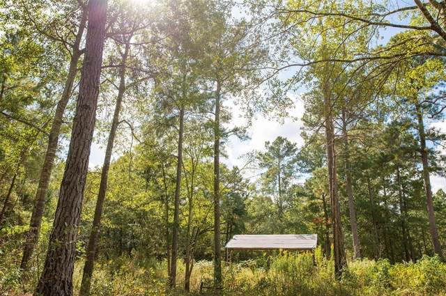 10443 County Road 485, Tyler, TX 75706 (MLS #14554169) :: Hargrove Realty Group