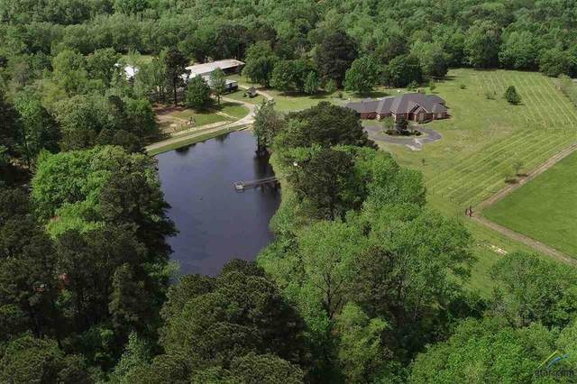 3165 Us Highway 271 S, Pittsburg, TX 75686 (#14554292) :: Homes By Lainie Real Estate Group