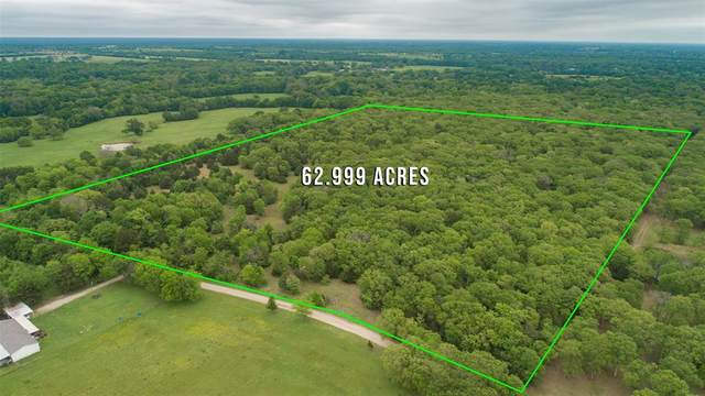 TBD County Road 4525, Point, TX 75472 (MLS #14554485) :: Lyn L. Thomas Real Estate | Keller Williams Allen