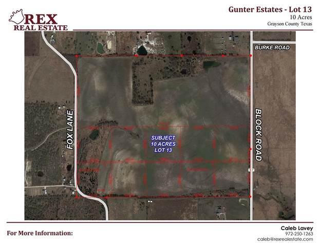 600 Fox Lane, Gunter, TX 75058 (MLS #14554661) :: The Chad Smith Team