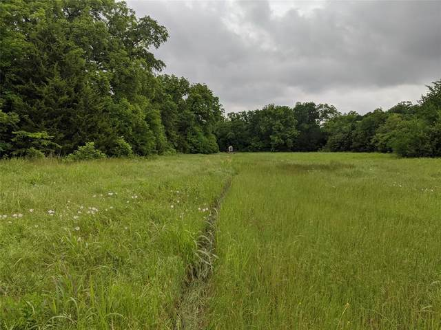000 County Road 830 Road, Anna, TX 85409 (MLS #14554736) :: Russell Realty Group