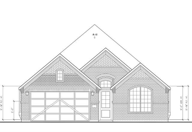 175 Lakeview Circle, Pilot Point, TX 76258 (MLS #14554813) :: The Juli Black Team
