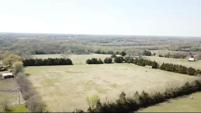 Lot 2&3 Burks, Whitewright, TX 75491 (MLS #14554970) :: VIVO Realty